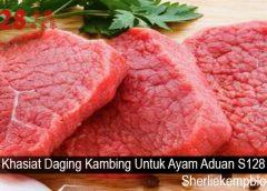 Khasiat Daging Kambing Untuk Ayam Aduan S128
