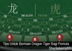 Tips Untuk Bermain Dragon Tiger Bagi Pemula